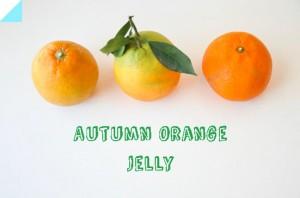 Autumn Orange Jelly
